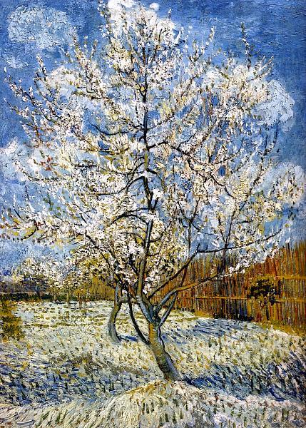 Vincent Van Gogh 1853 1890 Pecher En Fleurs